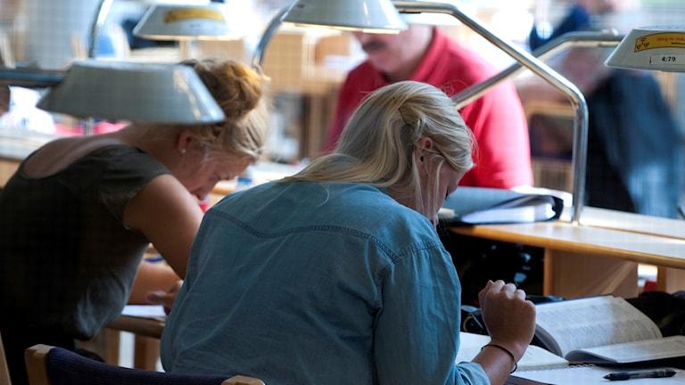 Studenter studerar i bibliotek.