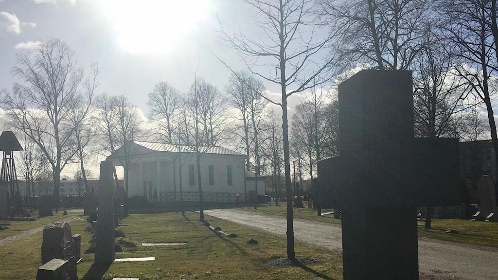 En kyrkogård i motljus.