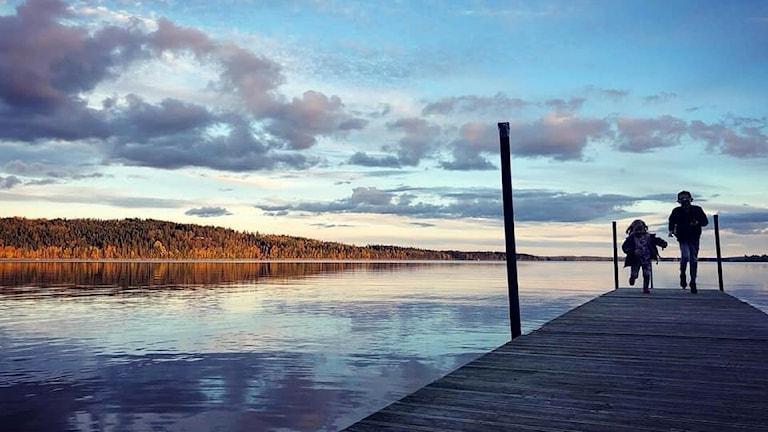 Höstbild av Linn Glans,Svanebro, Ör.