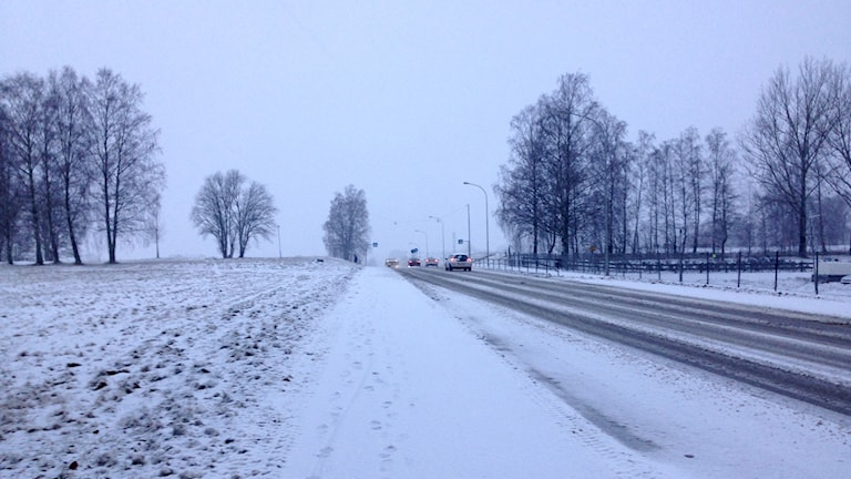 Vinterlandskap. Snöig väg och åker.
