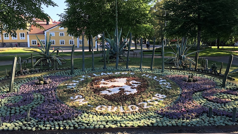 Kaktusplaneringen i Linnéparken