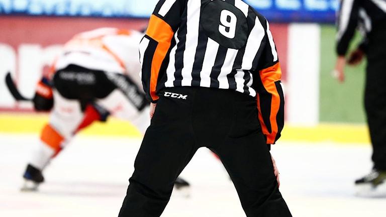 Anonym bild av en hockeydomare på isen.