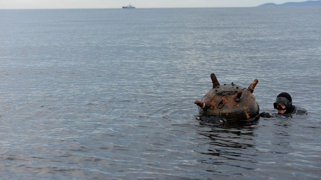 En av försvarets röjdykare har simmat intill den rostiga sjöminan för att aptera sprängmedel. Foto: Emil Silferberg/Försvarsmakten