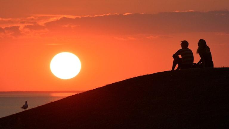 Siluetten av ett par som sitter och tittar på solnedgången