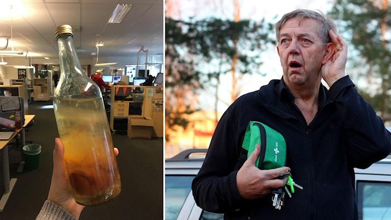 P4 Västerbottens tidigare programledare Gösta Dahlgren berättar hur idén till programpunkten om volga-svampen kom till i början på 90-talet.