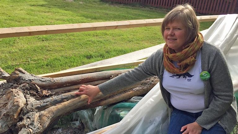 Anna Maria Rautio visar var trädet brunnit
