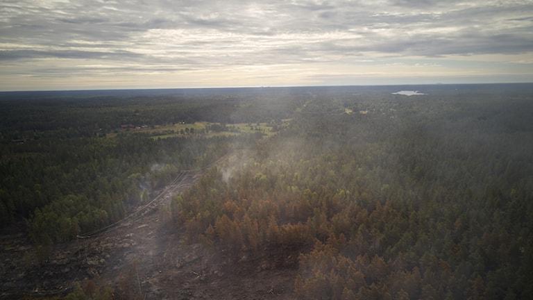 Räddningstjänst, militär och specialutbildade skogsbrandmän jobbar med släckningsarbetet vid branden nordväst om Oskarshamn.