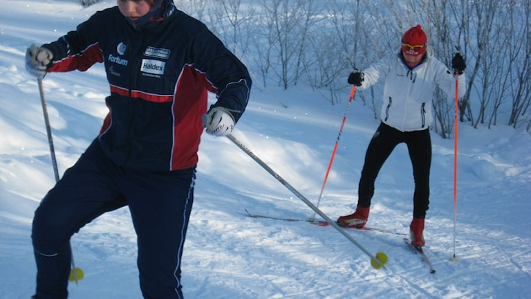 Skidorienterare som åker i terrängen vid Carlshöjd i Umeå. Foto: Filippa Armstrong, SR.
