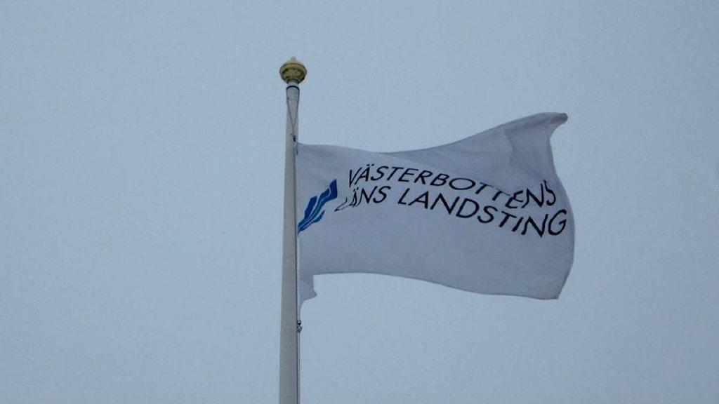 Landstingets flagga