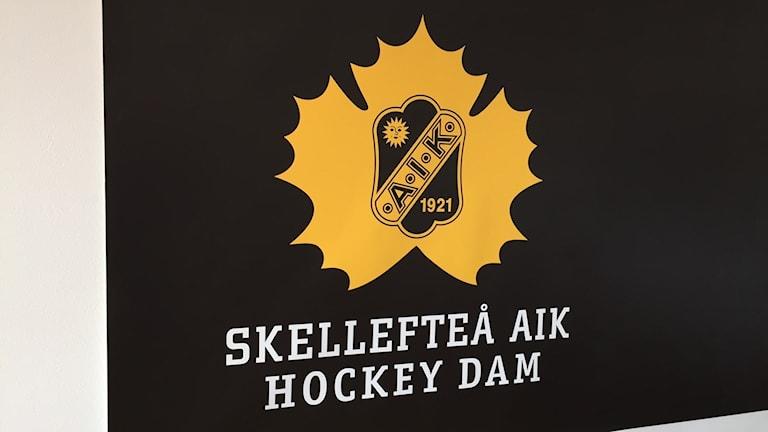 Skellefteå AIK startar damlag.