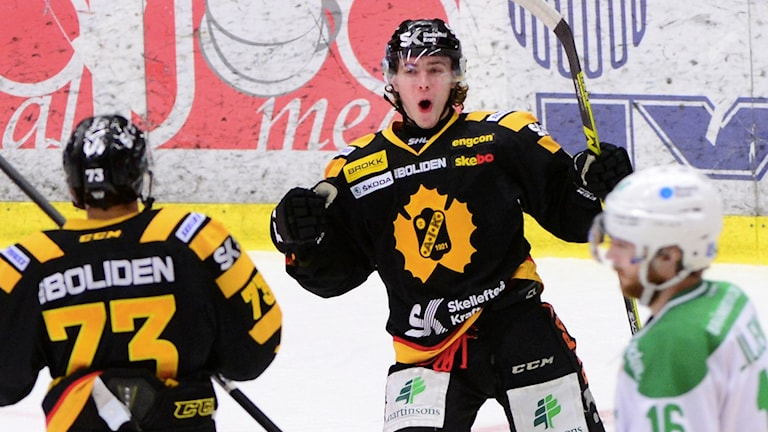 Andreas Wingerli Skellefteå AIK