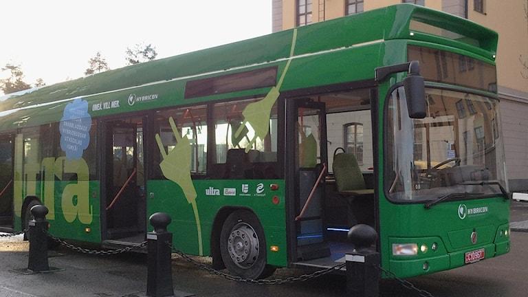 Batterierna sitter i taket på de nya elbussarna i Umeå. Foto: Shaho Aulla/SR.