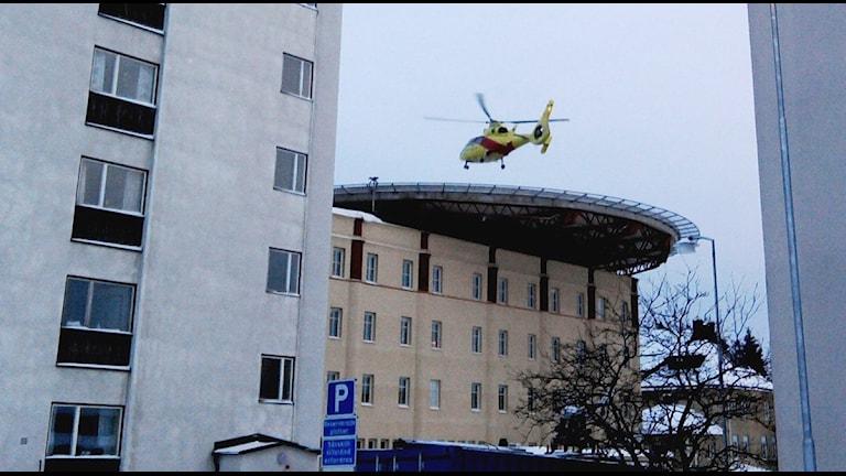 En ambulanshelikopter landar på NUS, Foto: Tommy Engman/SR.