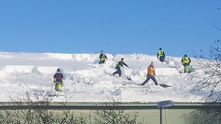 Snöskottning på en av Dragonhallarna. Foto: Lennart Odhström/SR.
