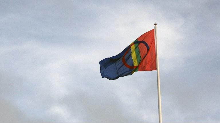 Samisk flagga, Foto: Tommy Engman/SR.