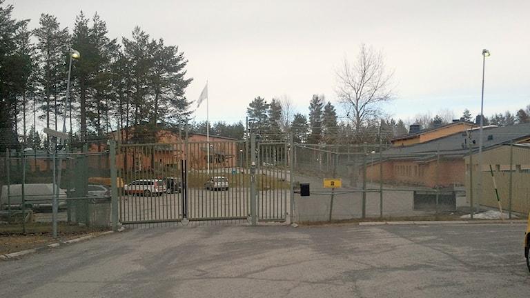 Anstalt Umeå på Ersboda. Foto Shaho Aulla/SR.