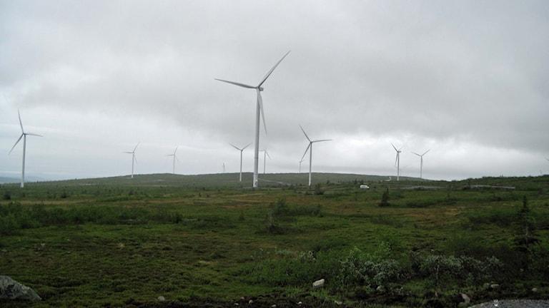 Vindkraftsparken på Storblaiken