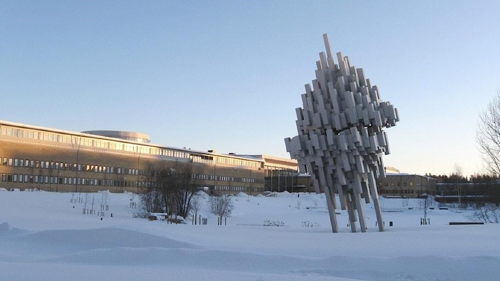Umeå Universitet, Foto: Anna Burén/SR.