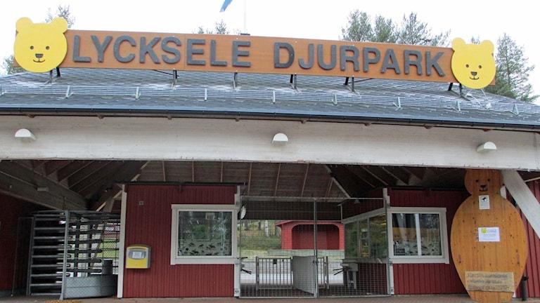 Entren till Lycksele Djurpark