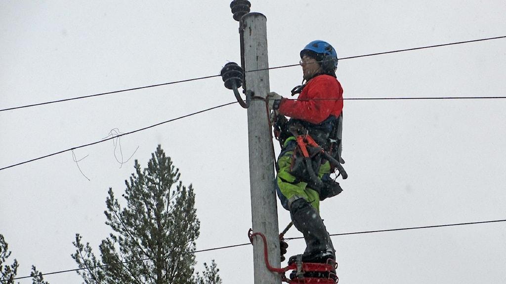 En linjearbetare rensar ledningsgator efter stormen Hilde. Foto: Örjan Holmberg/Sveriges Radio