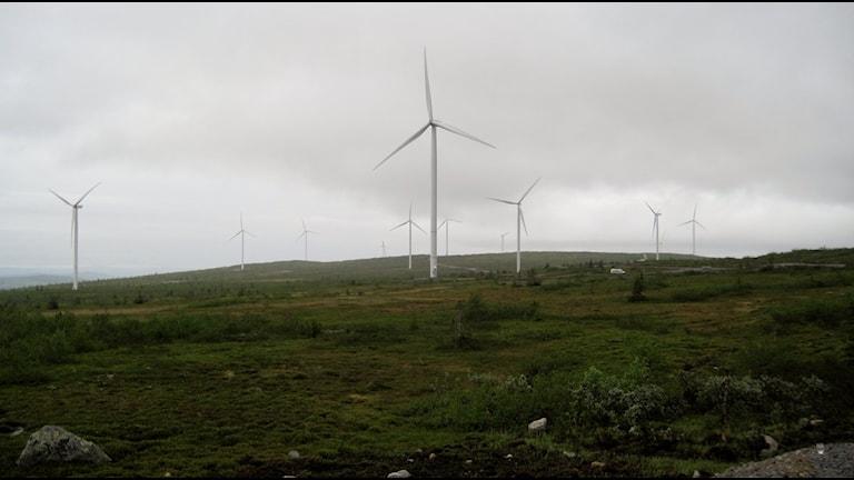 Vindkraftpark Blaiken