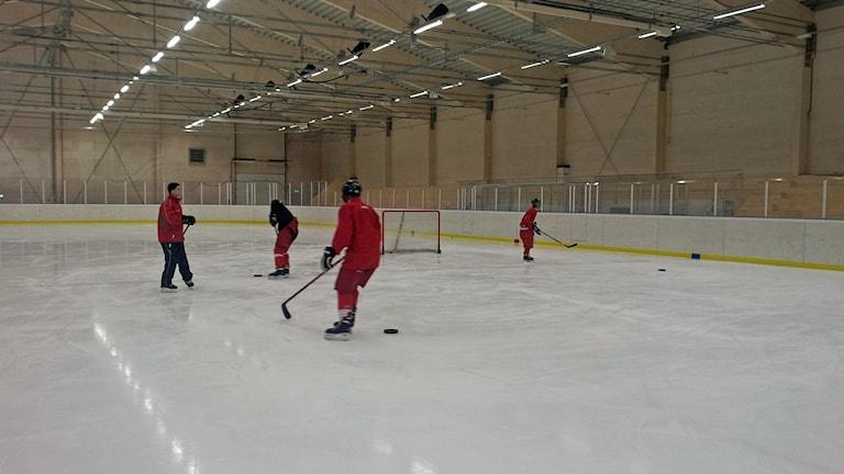 Hockeyträning för nybörjare i Skellefteå Foto Åza Meijer SR