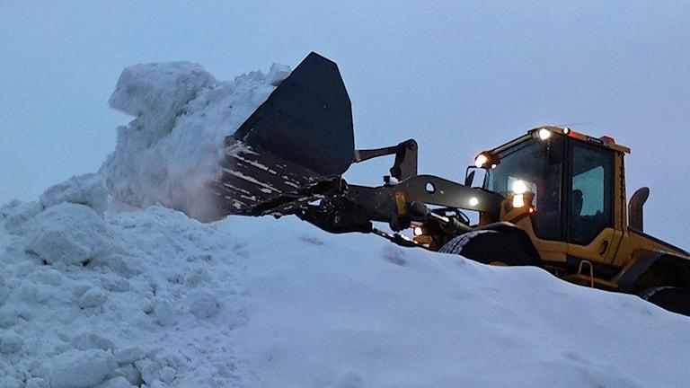 Snöröjning med traktor. Foto: Peter Öberg, Sveriges Radio.