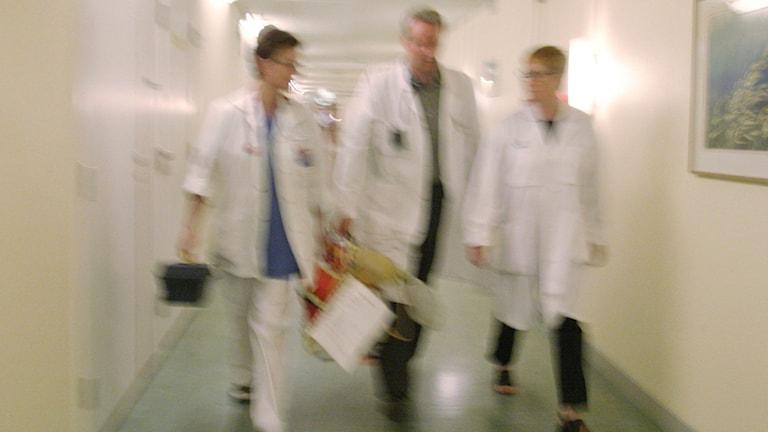 Kostnaderna för hyrläkare ökar i Västerbottens läns landsting. Bild på tre läkare i en korridor. Foto: Erik G Svensson/TT