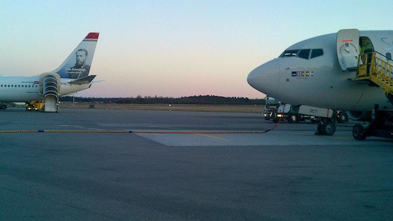 Landningsbanan, Umeå flygplats. Foto: Peter Öberg, Sveriges Radio.