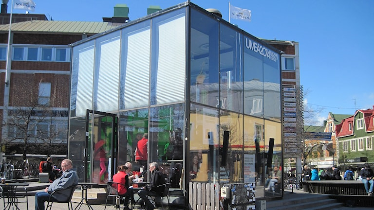 Glashuset på torget i Umeå. Foto: Agneta Johansson/SR
