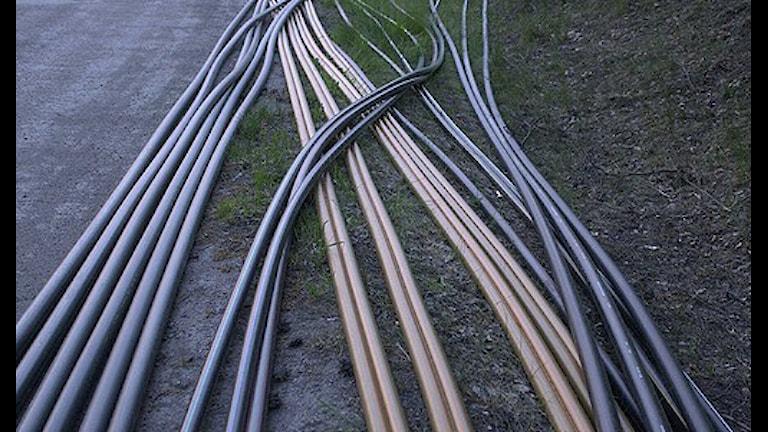Fiberkabel för bredband. Foto SVT Bild.