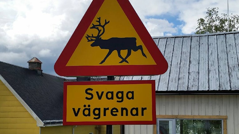 Svaga vägrenar i Västansjö. Lyssnarbild: Ingvar Lennartsson