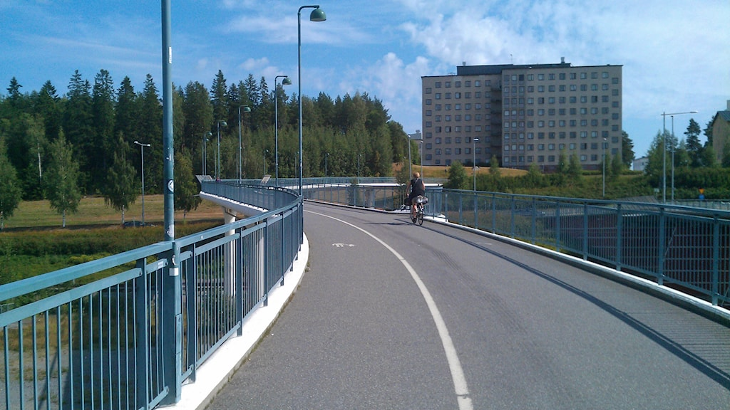 Cykel- och gångbron Svingen i Umeå. Foto: Peter Öberg, Sveriges Radio.