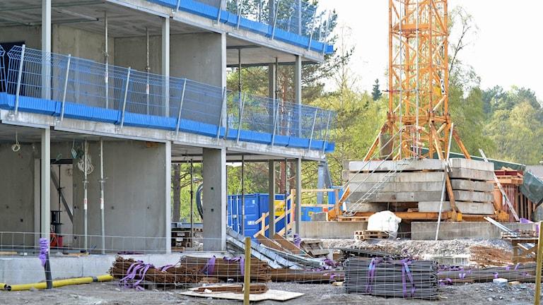 Bostadsbygge på Lilljansberget i Umeå. Foto: Lillemor Strömberg/Sveriges Radio.