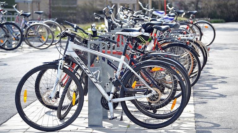 Cyklar i cykelställ. Foto: Lillemor Strömberg/Sveriges Radio.