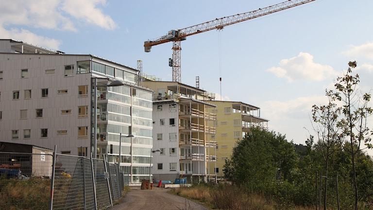 På Öbacka strand byggs det nya lägenheter. Foto: Helena Ramfjord/Sveriges Radio