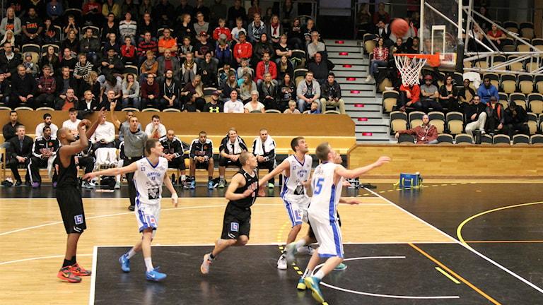 Egal Saleman i Umeå Basket