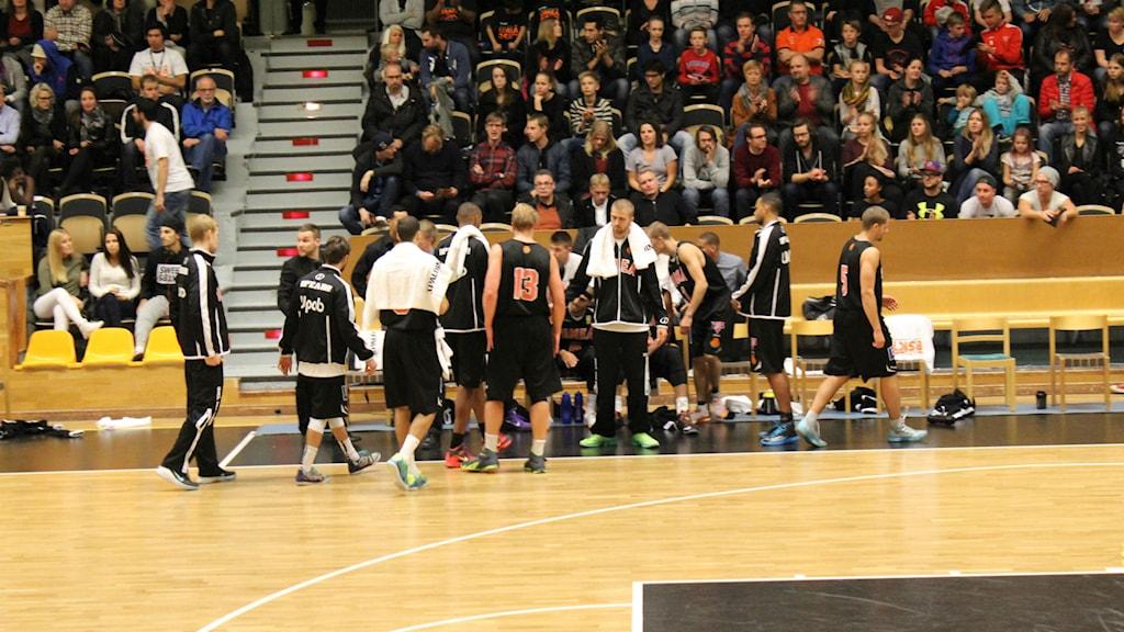 Umeå Basket