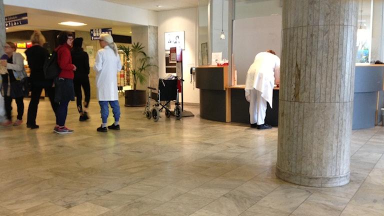 Entren vid NUS i Umeå. Foto: Erica Ddahlgren/Sveriges Radio