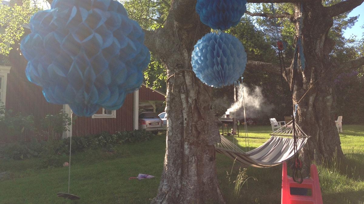 Sommarfest, semester, party. Foto: Erica Dahlgren/Sveriges Radio