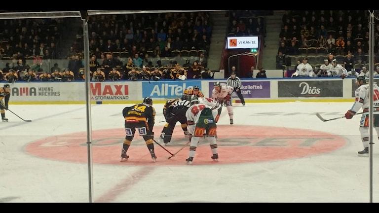 Arkivbild. Skellefteå AIK mot Frölunda 17/11 2014. Foto Rihane Rohuani/SR.