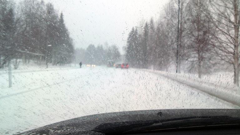 Snöoväder, Foto: Peter Öberg/SR.
