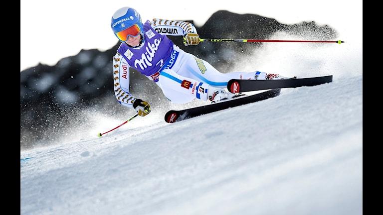 Maria Pietilä Holmner