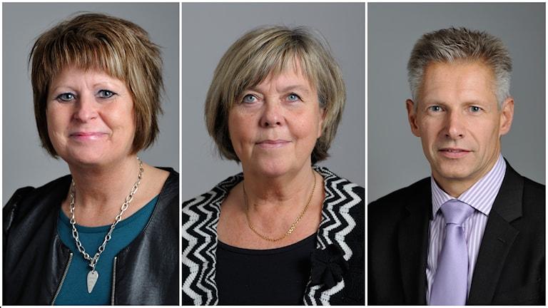 Elisabeth Björnsdotter Rahm (M), Maria Lundqvist-Brömster och Anders Sellström (KD). Foto: TT