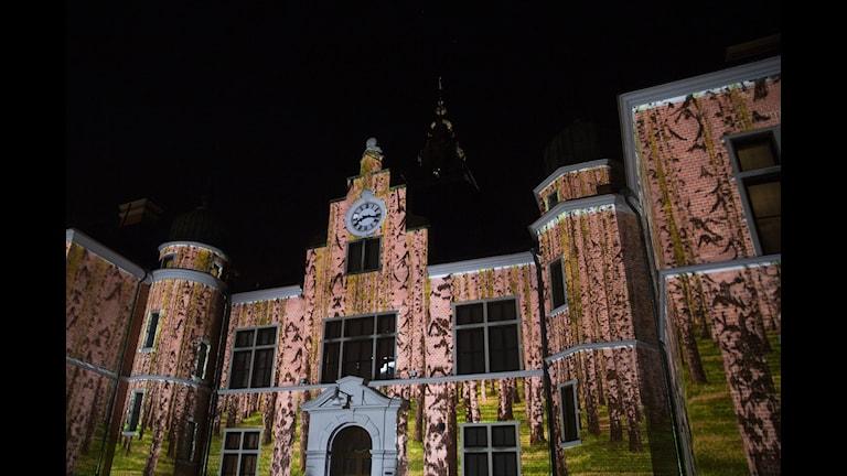 Kulturhuvudstadsåret avslutades med Northen Light. Foto: Malin Grönborg