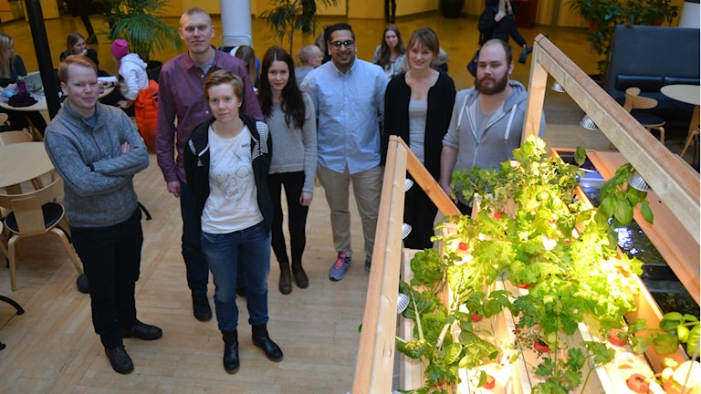 Studenterna bakom uppfinningen. Louise Lennartsson, andra till vänster, tror att det kommer bli allt vanligare att odla på höjden.
