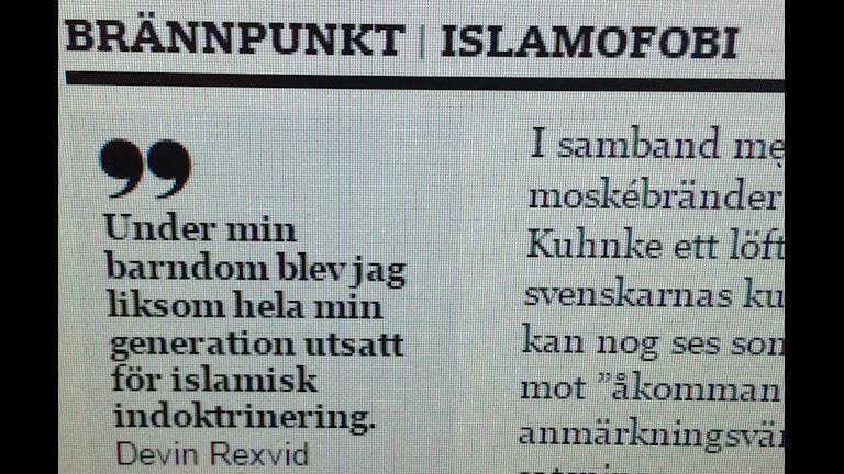 Från dagens debattartikel. Foto Lennart Odhström/SR