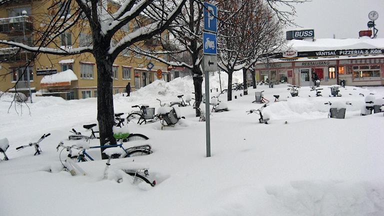 Busstationen i Skellefteå snö. Översnöade cyklar. Foto: Linnea Hedelilja/Sveriges Radio