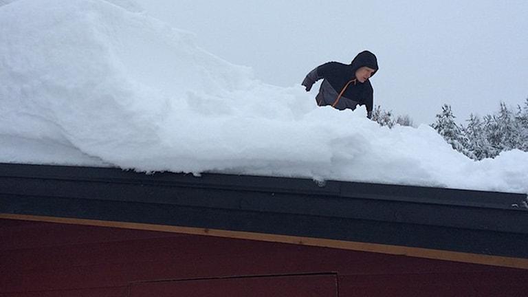 Skottning av snö på tak. Foto: Daniel Muotka