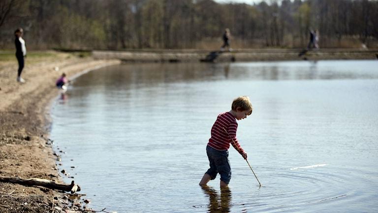 Barn leker i vattnet vid en strand.